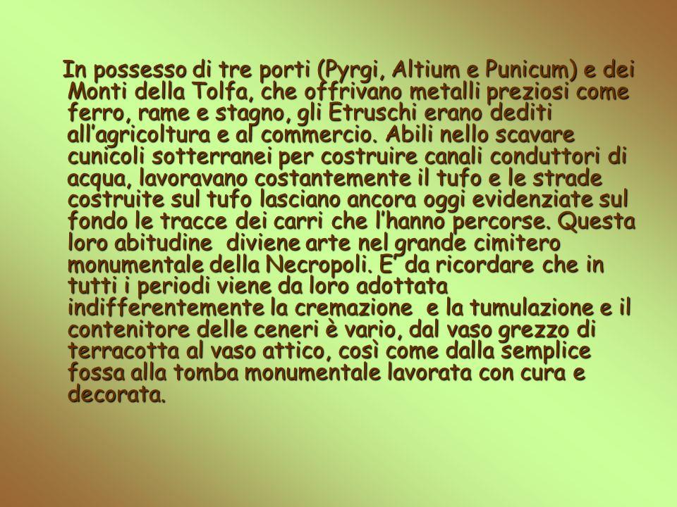 In possesso di tre porti (Pyrgi, Altium e Punicum) e dei Monti della Tolfa, che offrivano metalli preziosi come ferro, rame e stagno, gli Etruschi erano dediti all'agricoltura e al commercio.