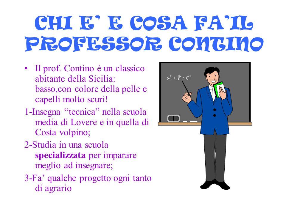CHI E' E COSA FA'IL PROFESSOR CONTINO