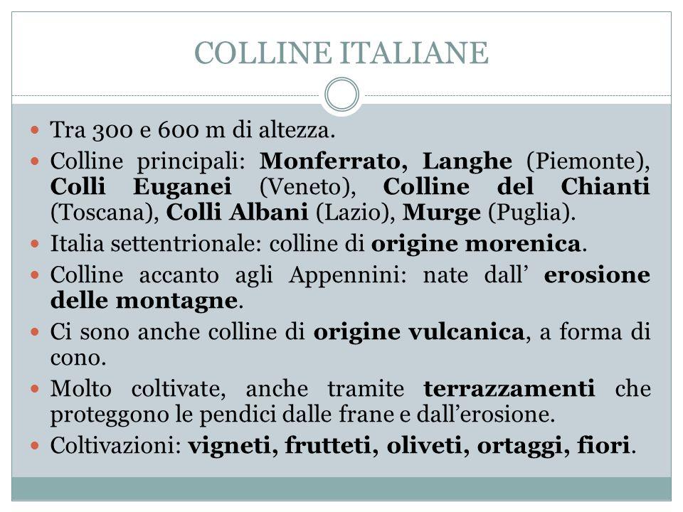 COLLINE ITALIANE Tra 300 e 600 m di altezza.