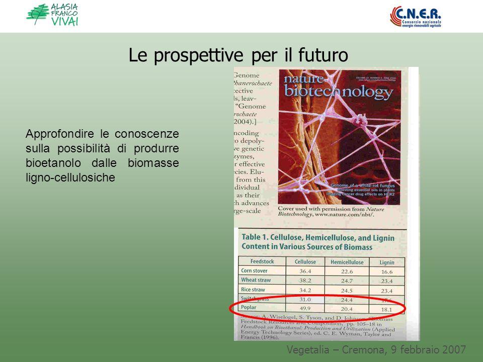 Le prospettive per il futuro