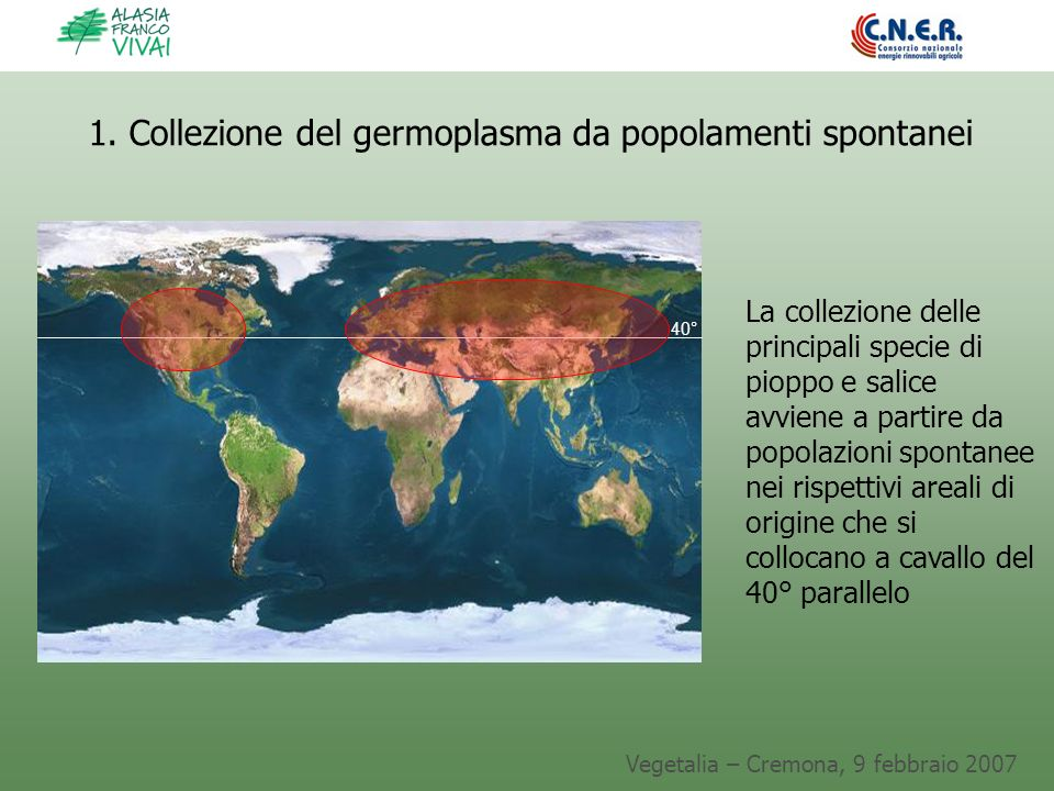 1. Collezione del germoplasma da popolamenti spontanei
