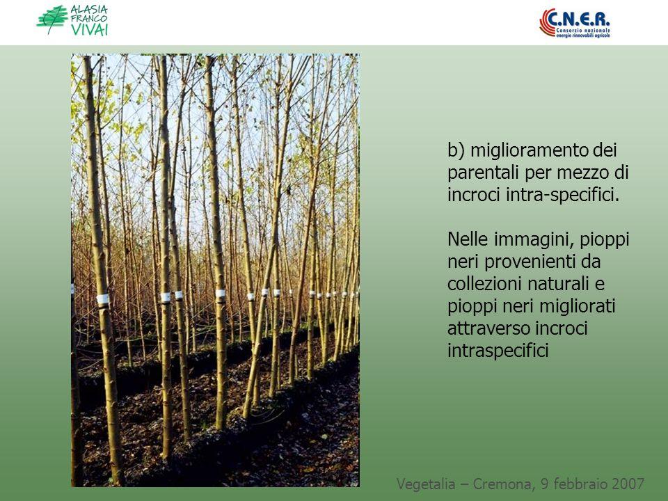 Vegetalia – Cremona, 9 febbraio 2007