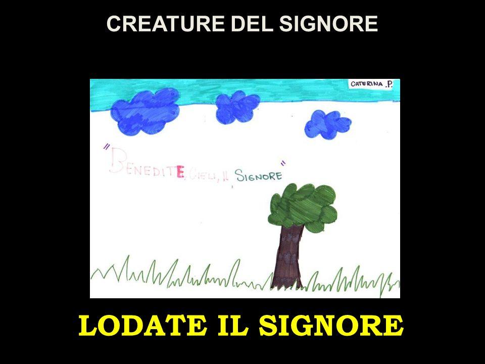 CREATURE DEL SIGNORE LODATE IL SIGNORE