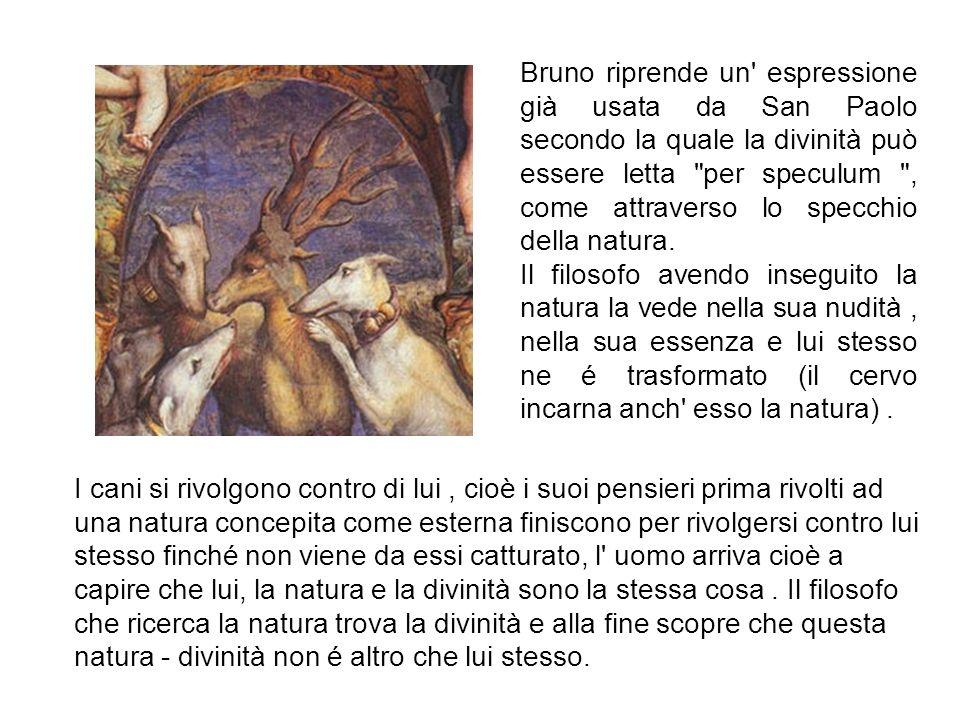 Bruno riprende un espressione già usata da San Paolo secondo la quale la divinità può essere letta per speculum , come attraverso lo specchio della natura.