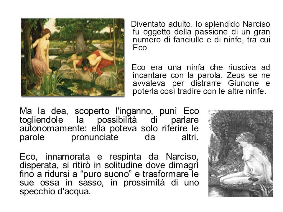 Diventato adulto, lo splendido Narciso fu oggetto della passione di un gran numero di fanciulle e di ninfe, tra cui Eco.