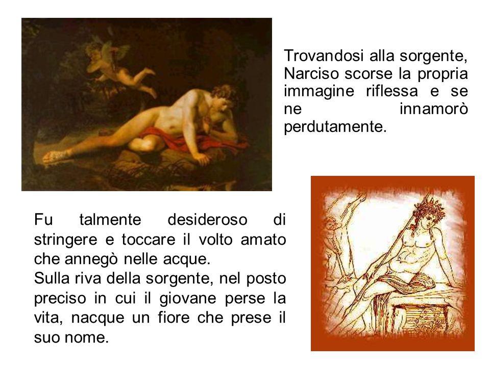 Trovandosi alla sorgente, Narciso scorse la propria immagine riflessa e se ne innamorò perdutamente.