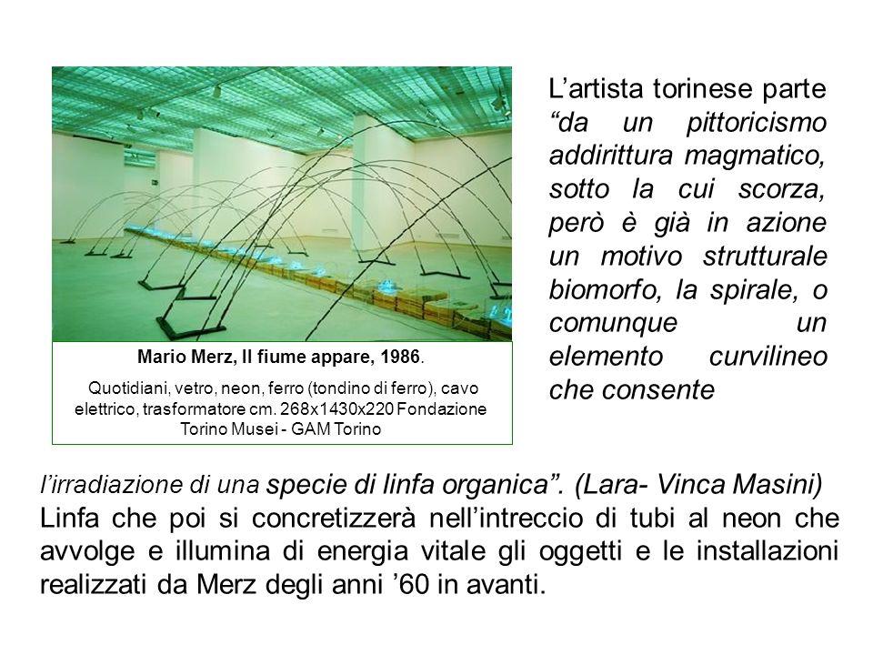 Mario Merz, Il fiume appare, 1986.