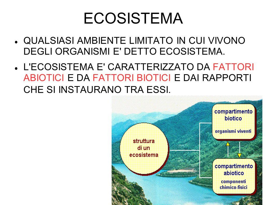 ECOSISTEMA QUALSIASI AMBIENTE LIMITATO IN CUI VIVONO DEGLI ORGANISMI E DETTO ECOSISTEMA.
