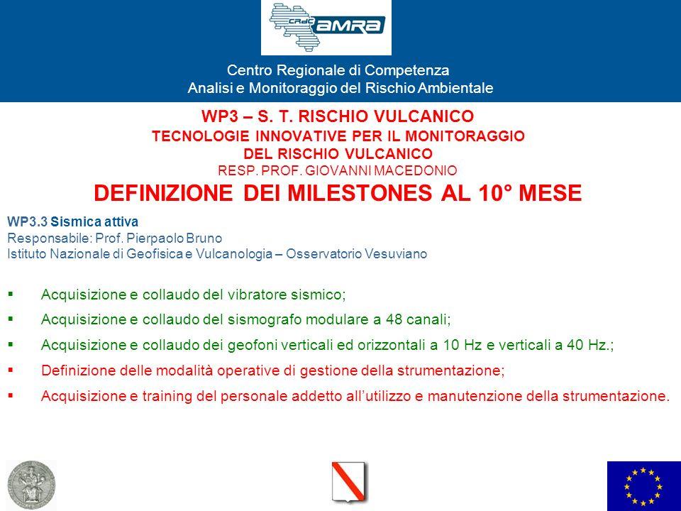WP3 – S. T. RISCHIO VULCANICO TECNOLOGIE INNOVATIVE PER IL MONITORAGGIO DEL RISCHIO VULCANICO RESP. PROF. GIOVANNI MACEDONIO DEFINIZIONE DEI MILESTONES AL 10° MESE