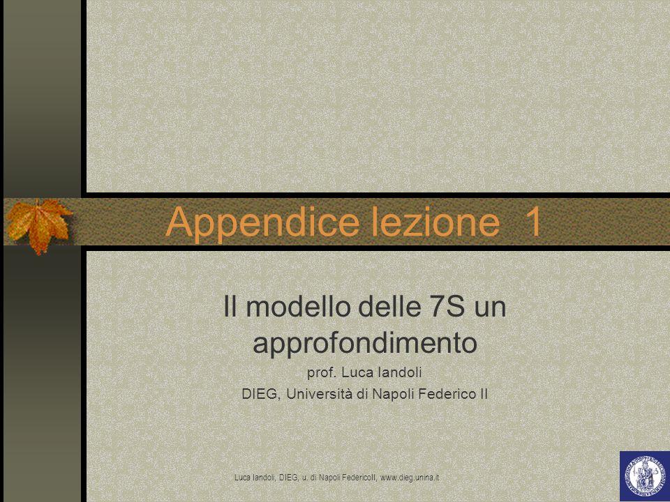 Appendice lezione 1 Il modello delle 7S un approfondimento