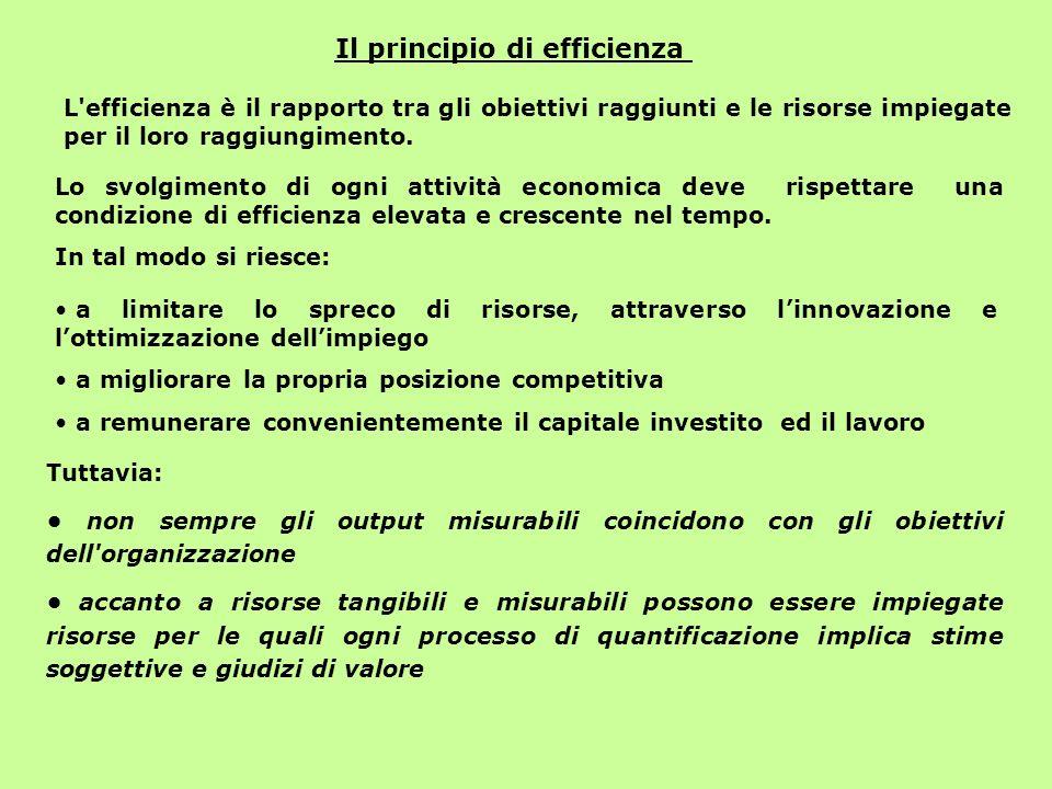 Il principio di efficienza