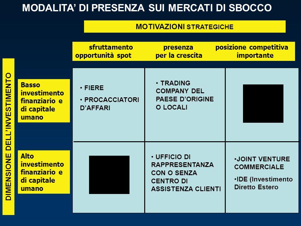 DIMENSIONE DELL'INVESTIMENTO MOTIVAZIONI STRATEGICHE