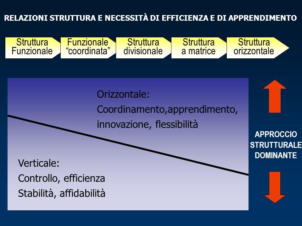 RELAZIONI STRUTTURA E NECESSITÀ DI EFFICIENZA E DI APPRENDIMENTO
