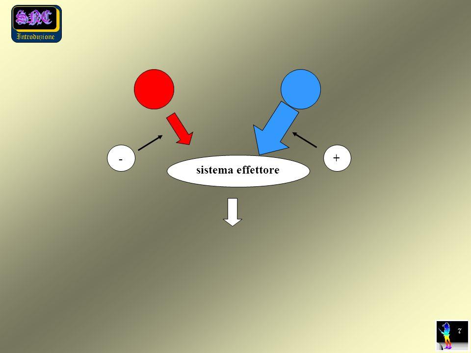 - + sistema effettore 7