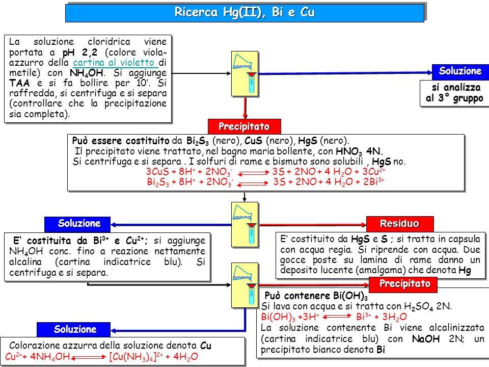 Ricerca Hg(II), Bi e Cu