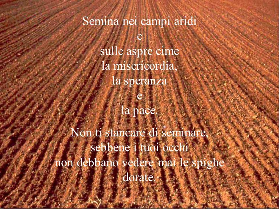 Semina nei campi aridi e sulle aspre cime la misericordia, la speranza e la pace.