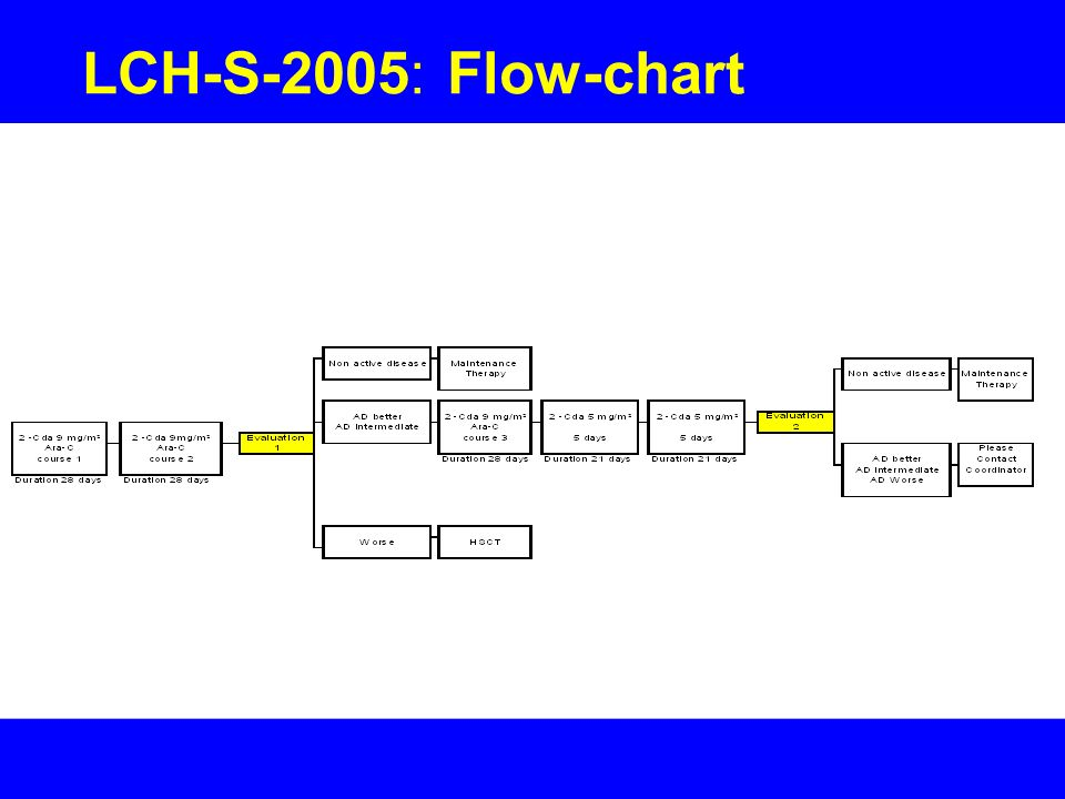 LCH-S-2005: Flow-chart
