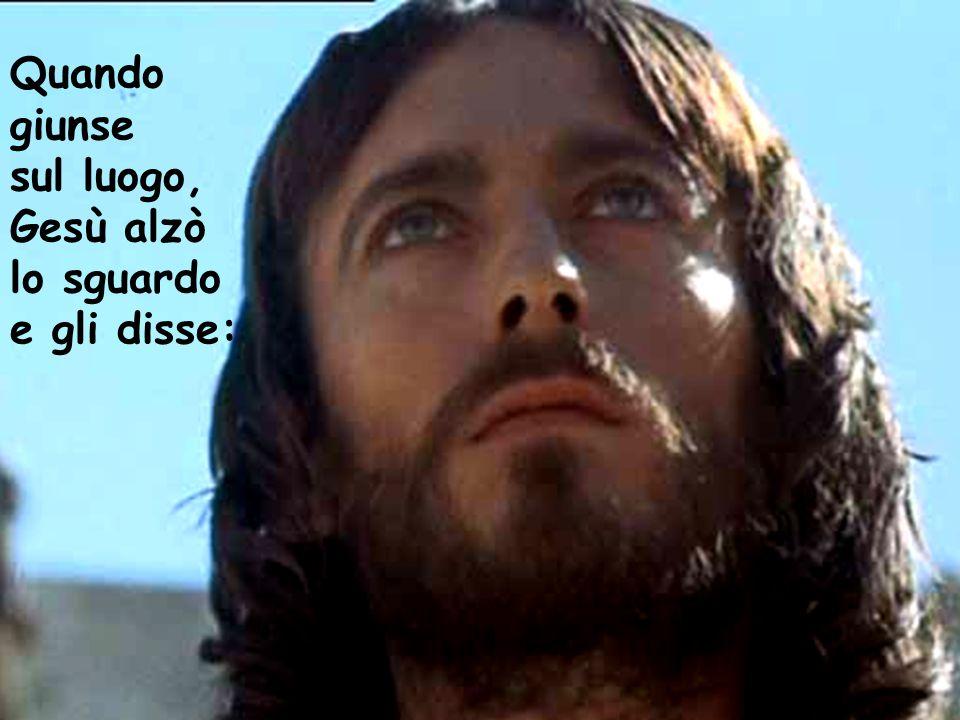 Quando giunse sul luogo, Gesù alzò lo sguardo e gli disse: