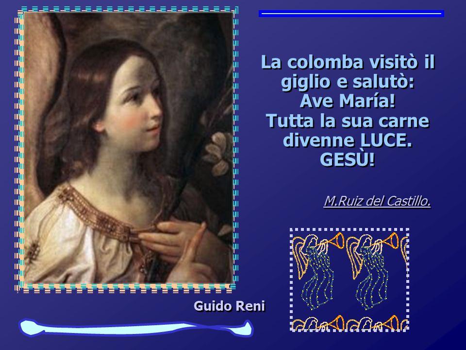 La colomba visitò il giglio e salutò: Ave María