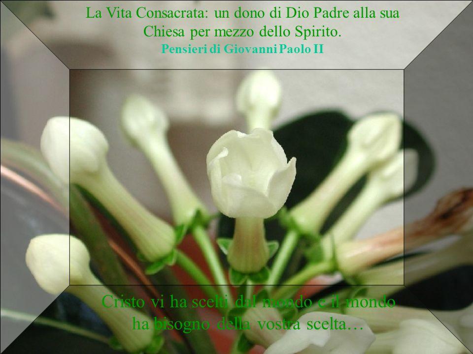 La Vita Consacrata: un dono di Dio Padre alla sua Chiesa per mezzo dello Spirito. Pensieri di Giovanni Paolo II