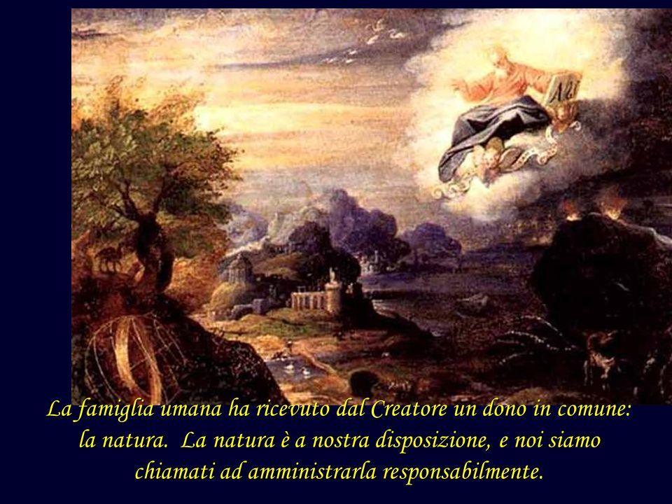 La famiglia umana ha ricevuto dal Creatore un dono in comune: la natura.