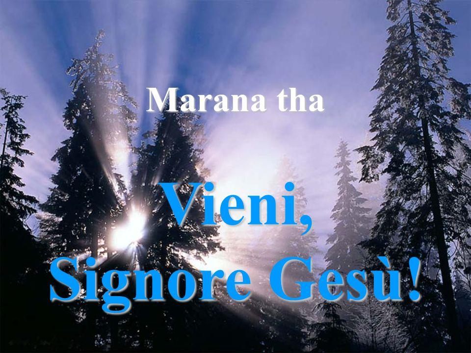 Marana tha Vieni, Signore Gesù!