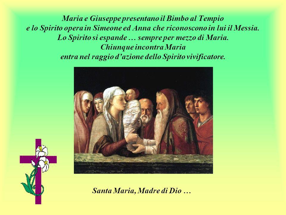Santa Maria, Madre di Dio …