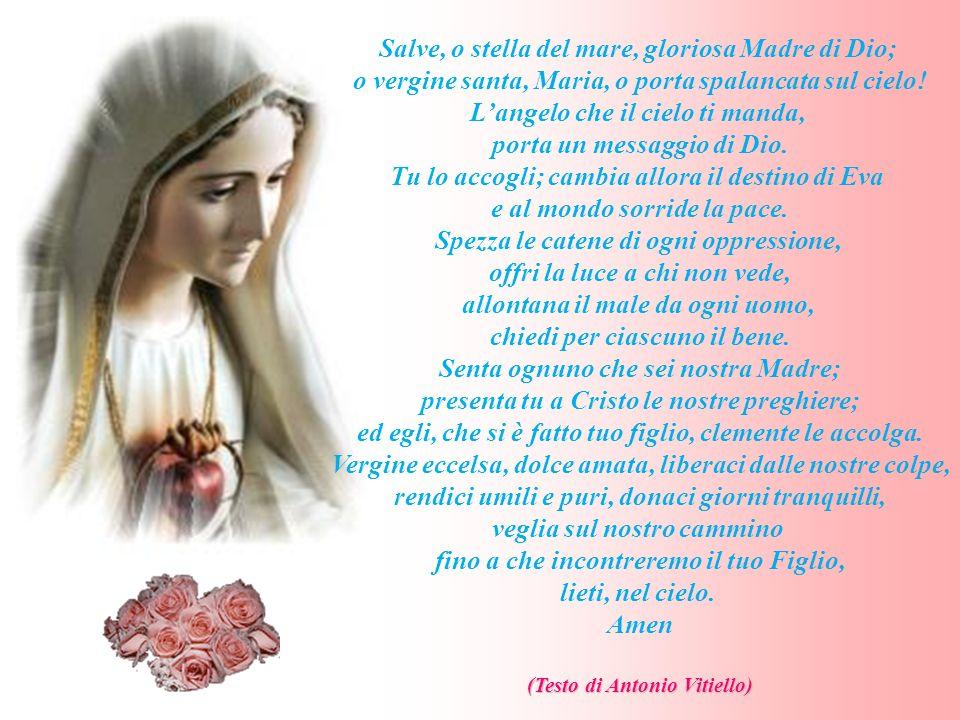 Salve, o stella del mare, gloriosa Madre di Dio;