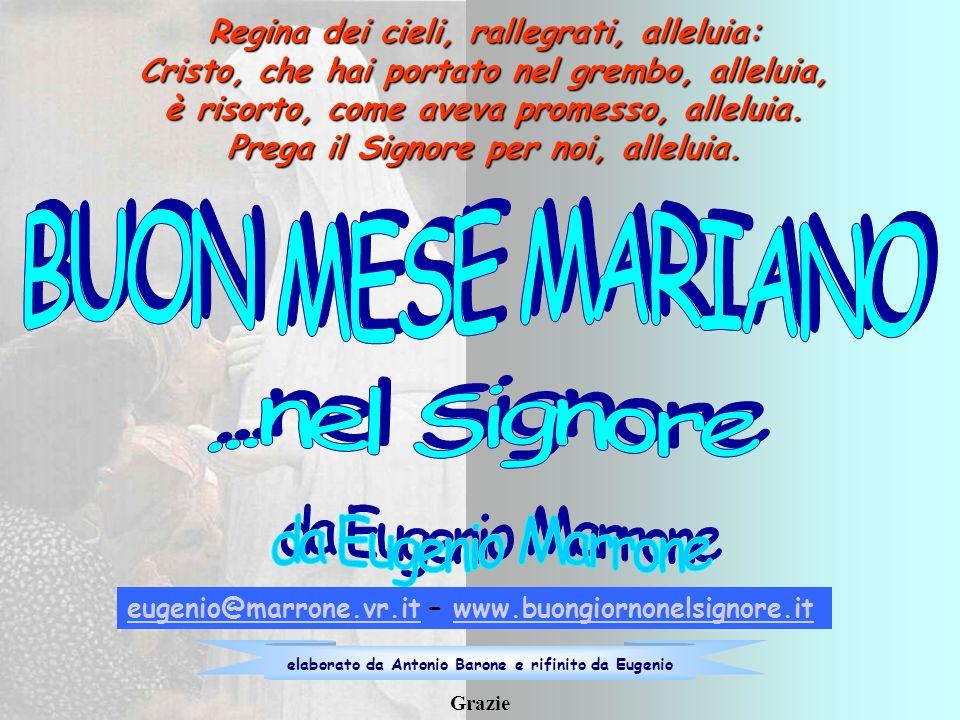BUON MESE MARIANO ...nel Signore da Eugenio Marrone