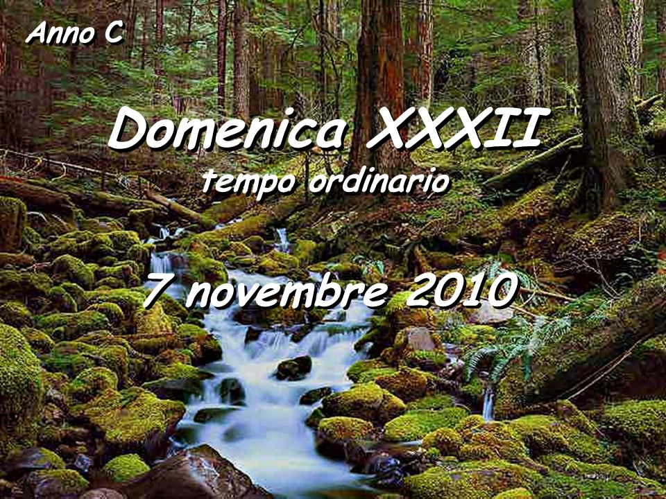 Anno C Domenica XXXII tempo ordinario 7 novembre 2010