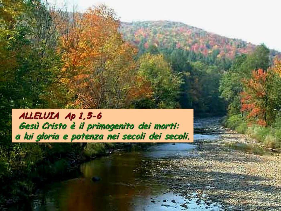 ALLELUIA Ap 1,5-6 Gesù Cristo è il primogenito dei morti: a lui gloria e potenza nei secoli dei secoli.