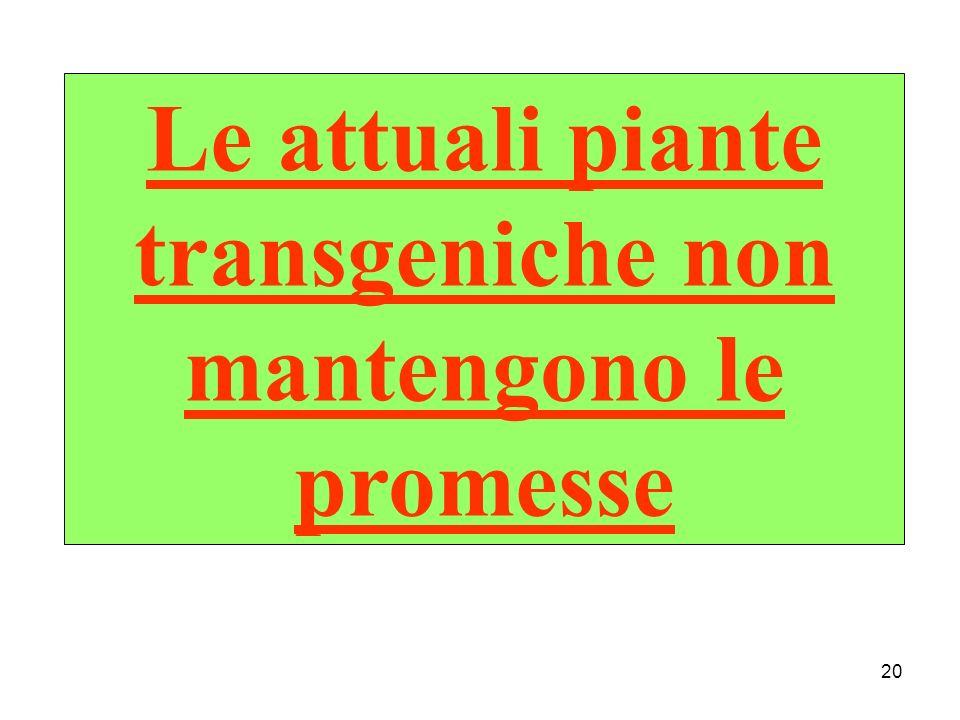 Le attuali piante transgeniche non mantengono le promesse