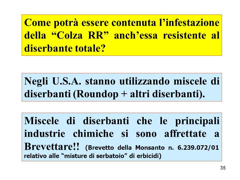 Come potrà essere contenuta l'infestazione della Colza RR anch'essa resistente al diserbante totale