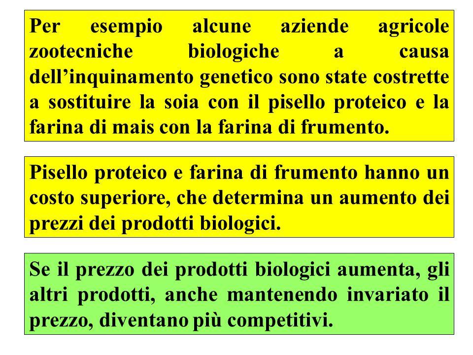 Per esempio alcune aziende agricole zootecniche biologiche a causa dell'inquinamento genetico sono state costrette a sostituire la soia con il pisello proteico e la farina di mais con la farina di frumento.
