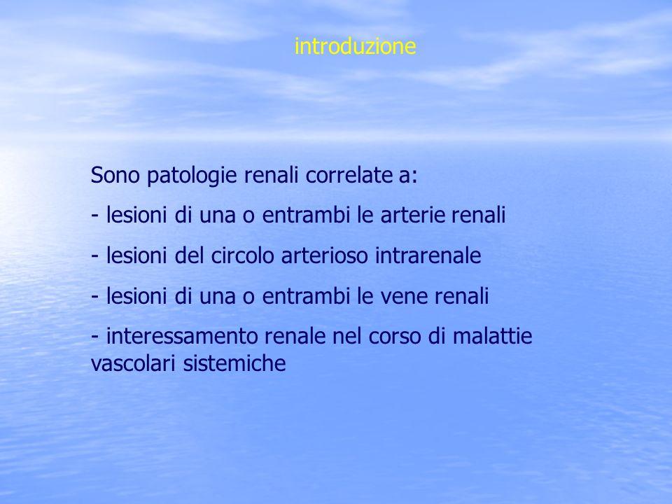 introduzione Sono patologie renali correlate a: - lesioni di una o entrambi le arterie renali. - lesioni del circolo arterioso intrarenale.
