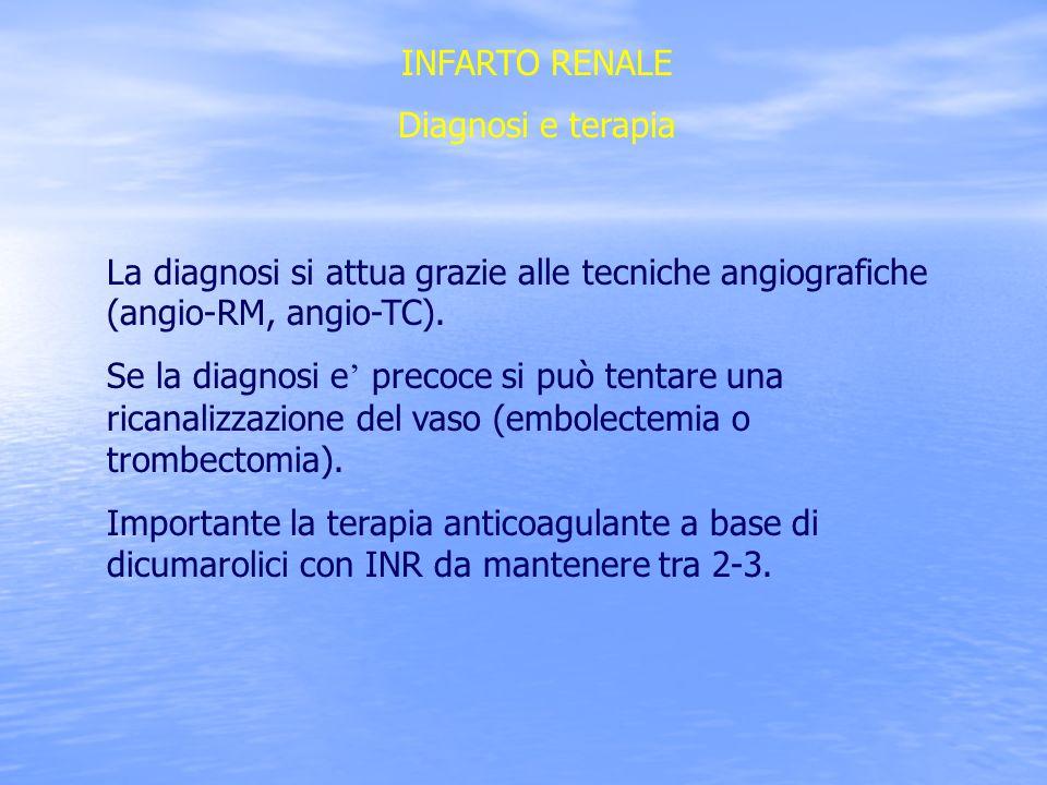 INFARTO RENALE Diagnosi e terapia. La diagnosi si attua grazie alle tecniche angiografiche (angio-RM, angio-TC).