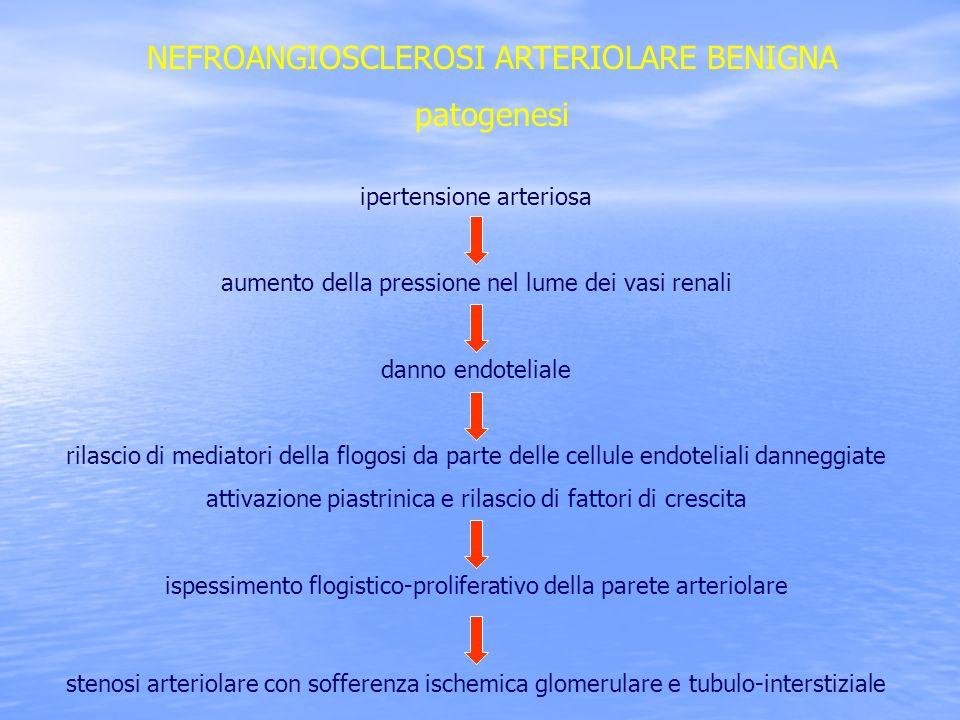 NEFROANGIOSCLEROSI ARTERIOLARE BENIGNA patogenesi