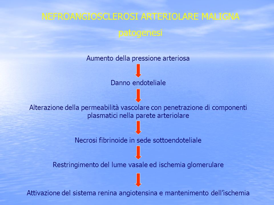 NEFROANGIOSCLEROSI ARTERIOLARE MALIGNA patogenesi