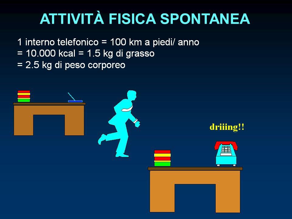 ATTIVITÀ FISICA SPONTANEA