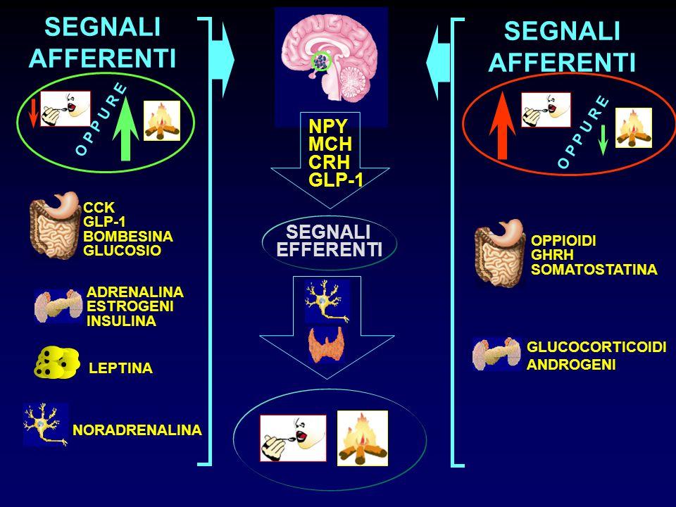 SEGNALI AFFERENTI NPY MCH CRH GLP-1 SEGNALI EFFERENTI O P P U R E