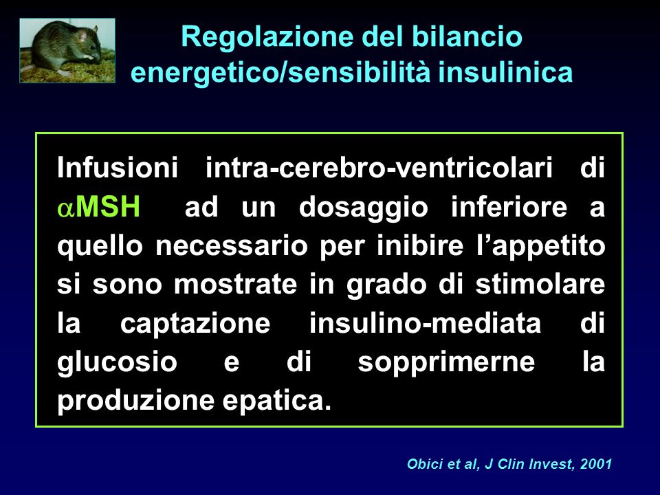 Regolazione del bilancio energetico/sensibilità insulinica