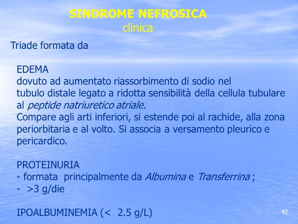 SINDROME NEFROSICA clinica Triade formata da EDEMA