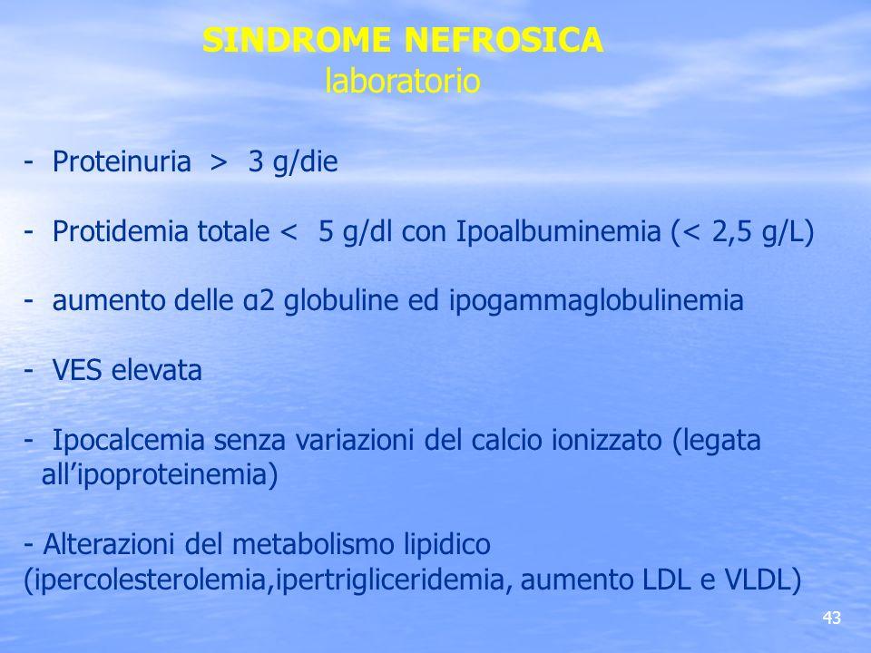 SINDROME NEFROSICA laboratorio - Proteinuria > 3 g/die