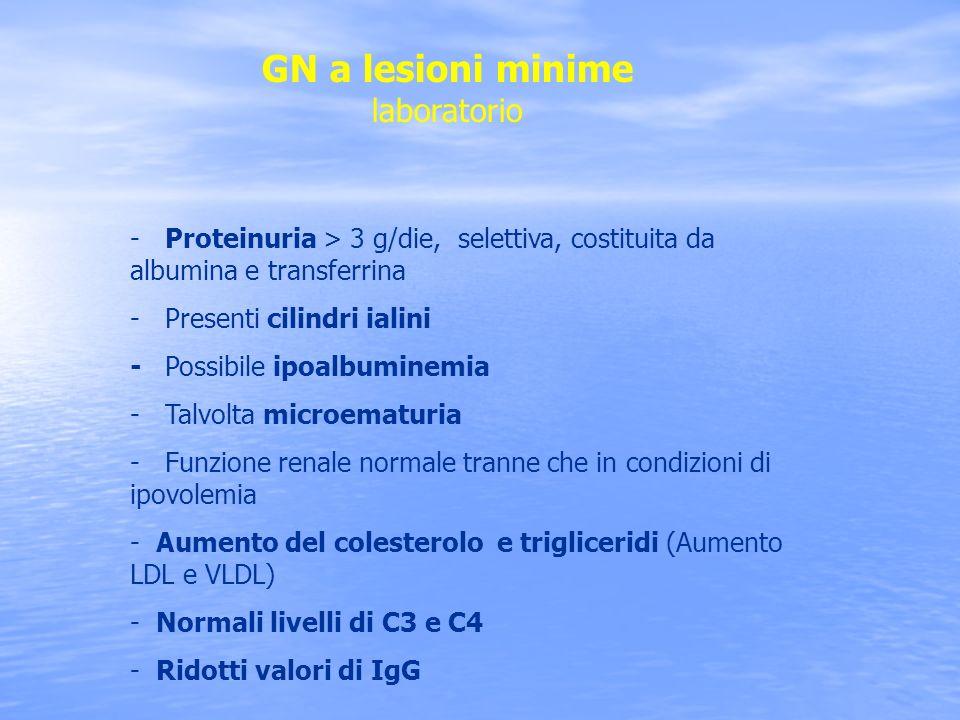 GN a lesioni minime laboratorio