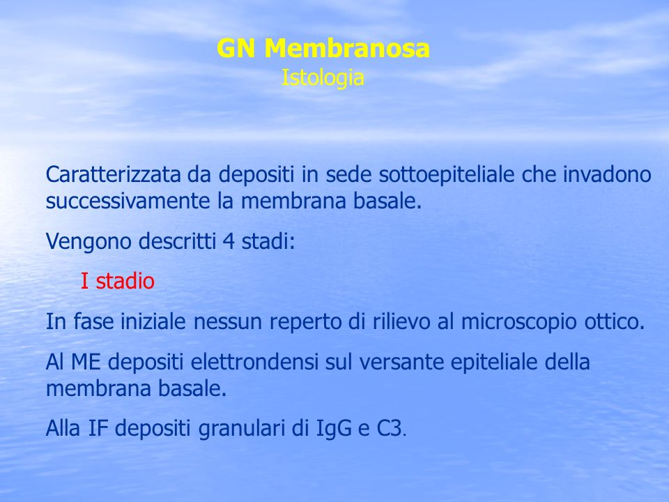 GN Membranosa Istologia