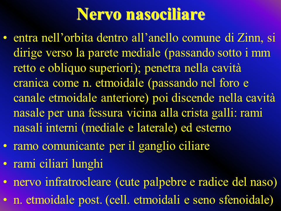 Nervo nasociliare