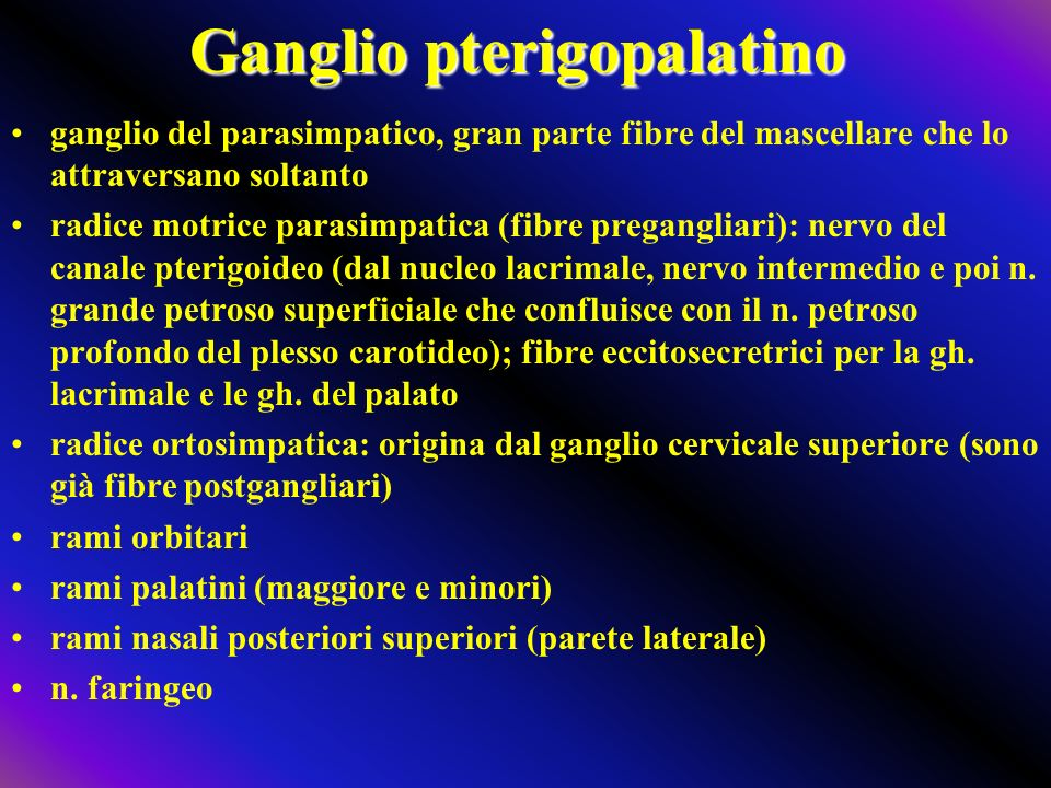 Ganglio pterigopalatino