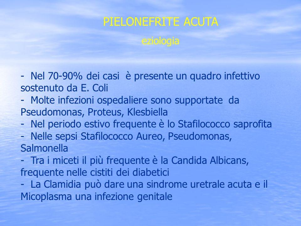 PIELONEFRITE ACUTA eziologia