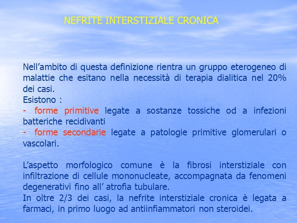 NEFRITE INTERSTIZIALE CRONICA