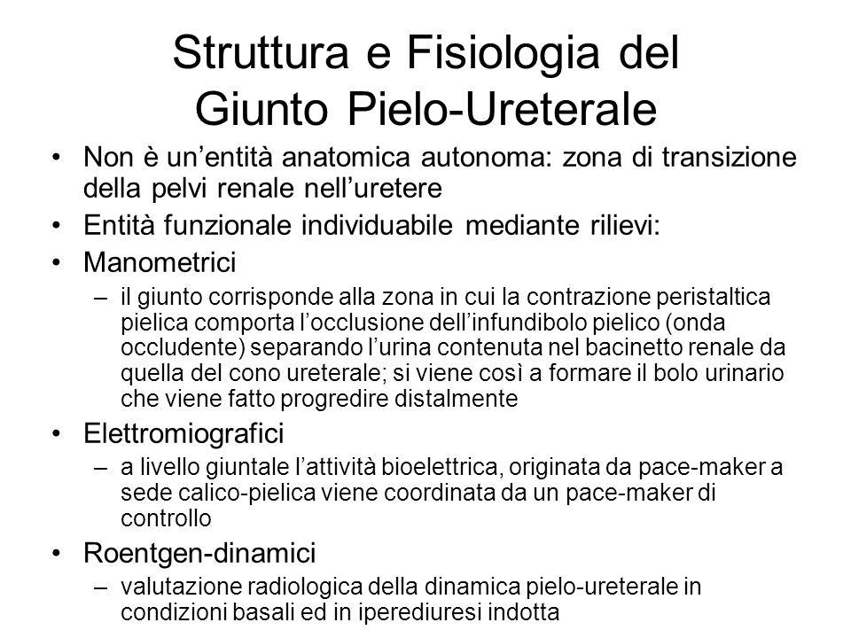 Struttura e Fisiologia del Giunto Pielo-Ureterale